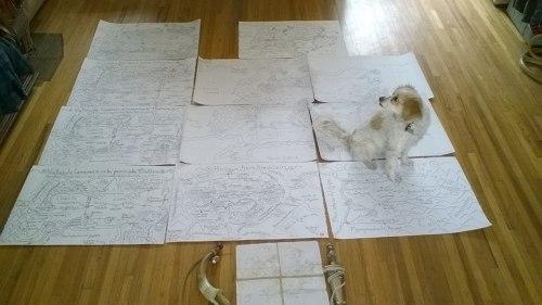 Mapas & Lunita